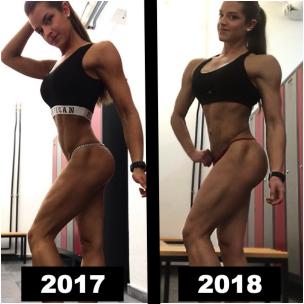 Progress2017bis2018